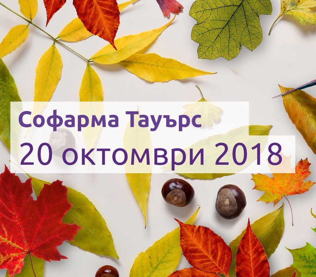 Data-i-miasto-20-oct-2018